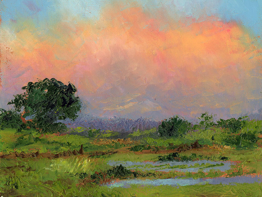 Palette Knife Painting - Marsh by Diane Martens