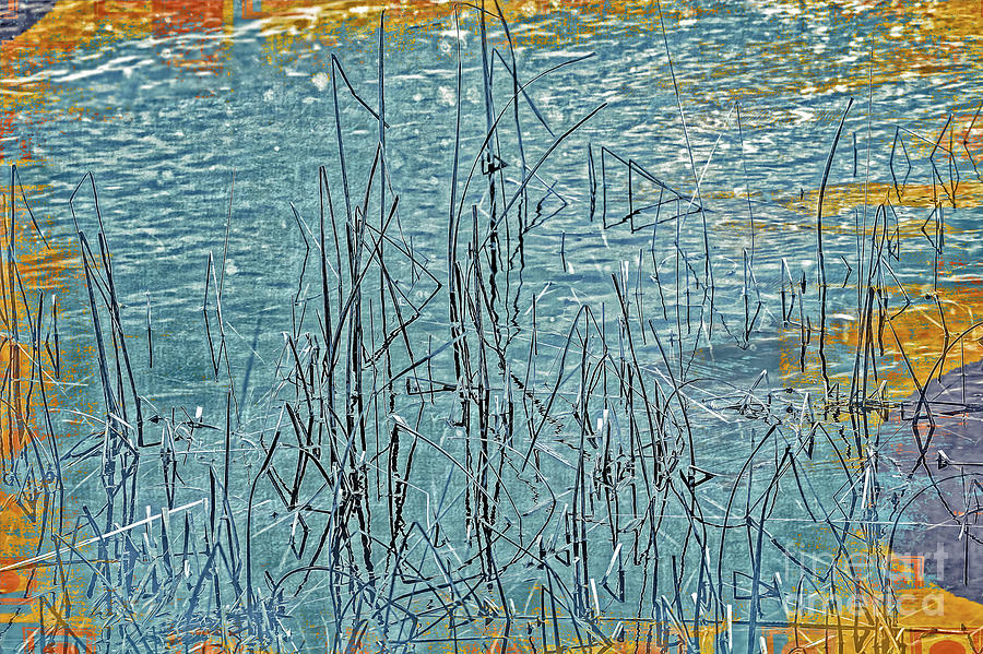 Marsh Grasses by Julie Chambers