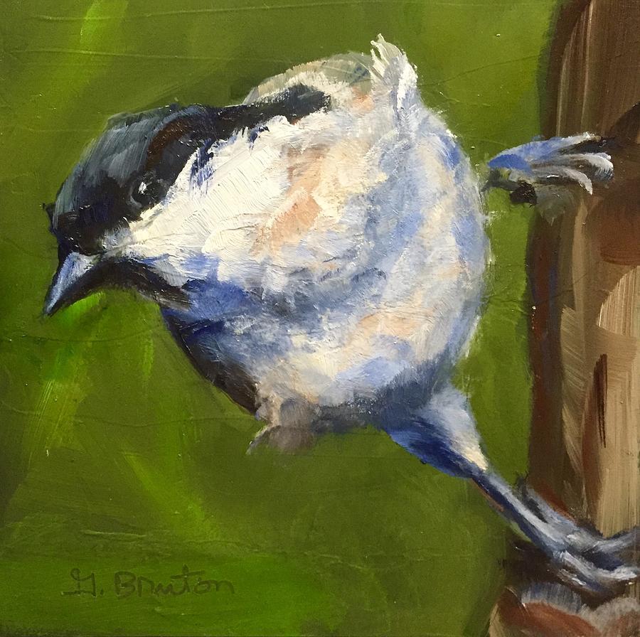 Bird Painting - Marsh Tit by Gary Bruton