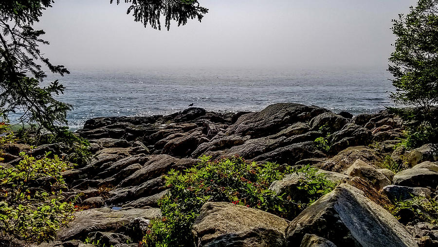Marshall Point Scenery, Maine by Marilyn Burton
