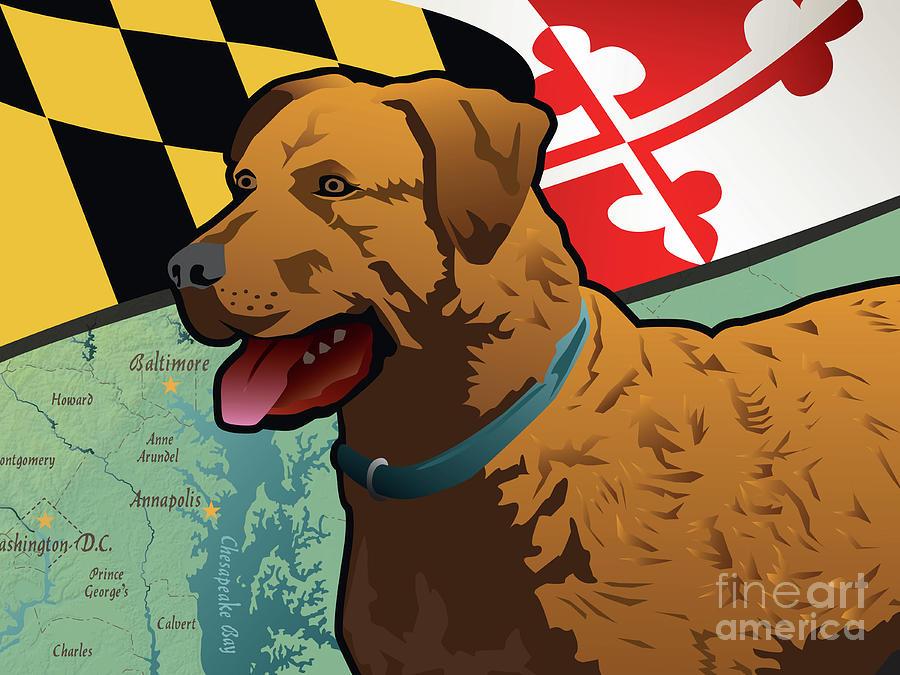 Chesapeake Bay Retriever Digital Art - Maryland Chesapeake Bay Retriever  by Joe Barsin