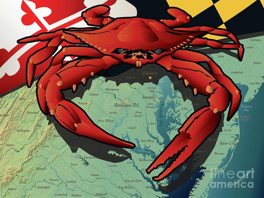 Crab Digital Art - Maryland Red Crab by Joe Barsin