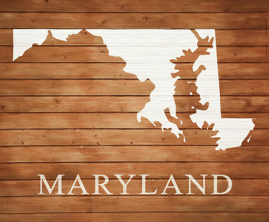 Maryland Map Mixed Media - Maryland Rustic Map On Wood by Dan Sproul