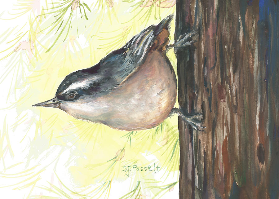 Ma's Morning Nuthatch by Sheri Jo Posselt