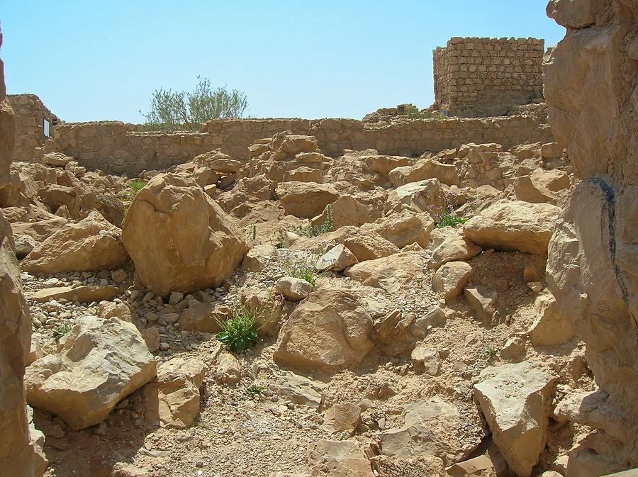 Israel Photograph - Masada I by Susan Heller
