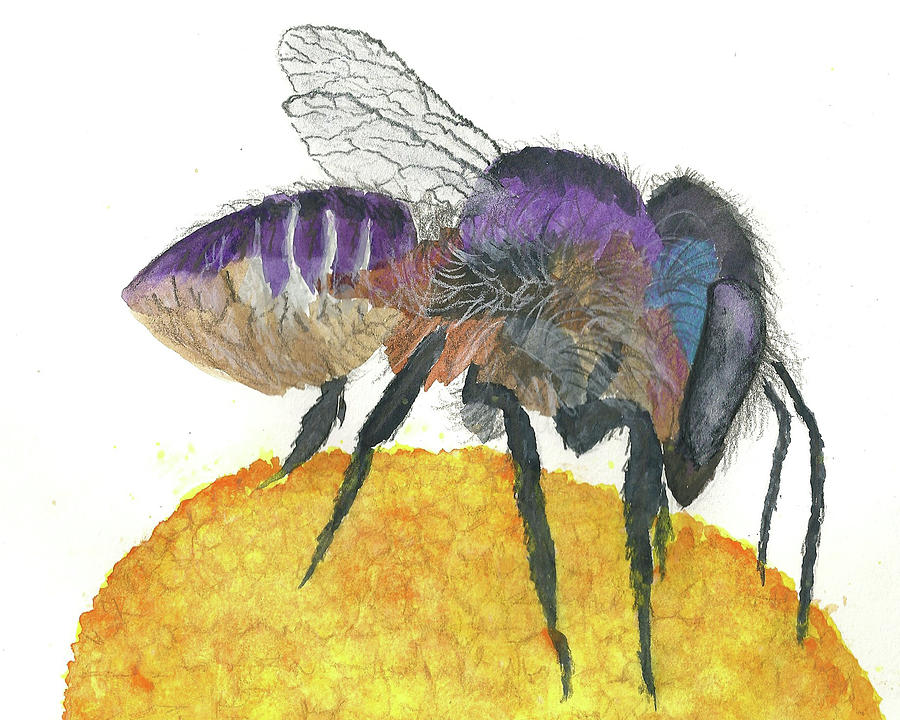 Mason Bee Painting - Mason Bee by Forrest C Greenslade PhD