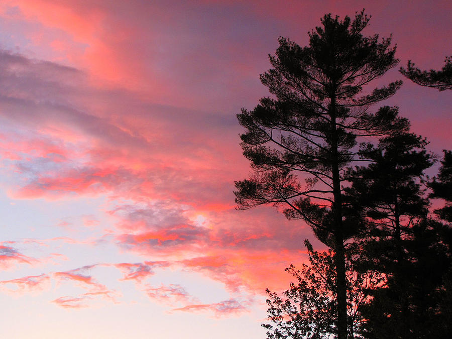 Massachusetts Sunset Photograph by Joe Fellini