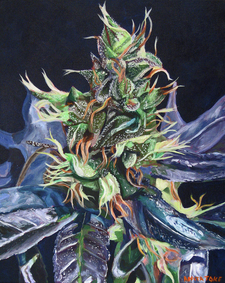 Cannabis Painting - Master Kush by Anita Toke