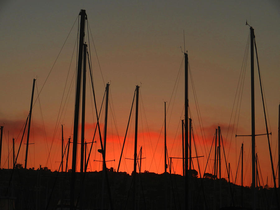 City Photograph - Masts At Sunset by Kelly E Schultz