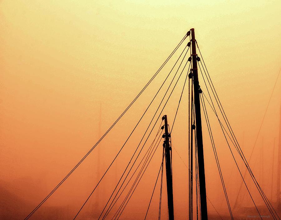 Masts Photograph - Masts by Coleman Mattingly