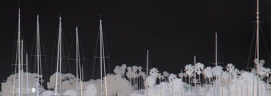 Digital Photograph - Masts by Dana Patterson
