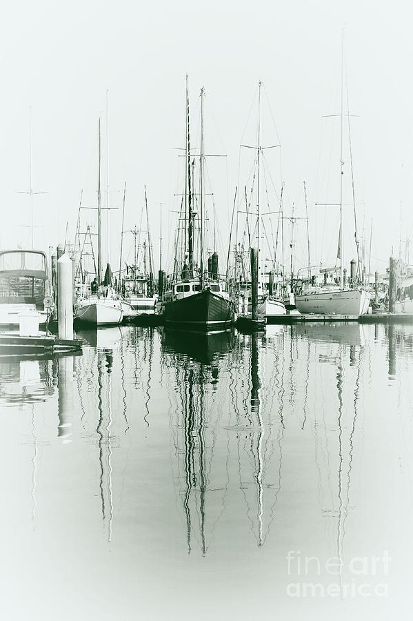 masts by Sheila Ping