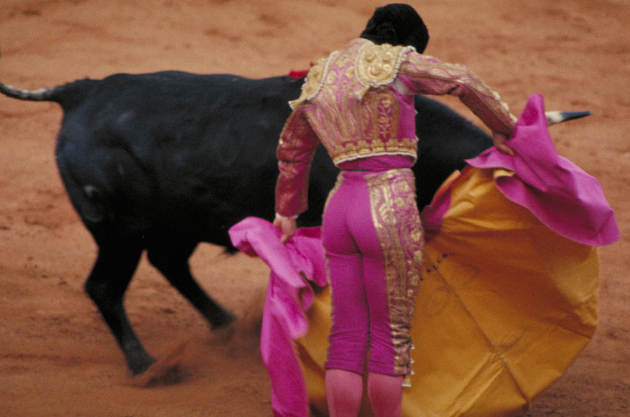 Fight Photograph - Matador And Bull by Carl Purcell