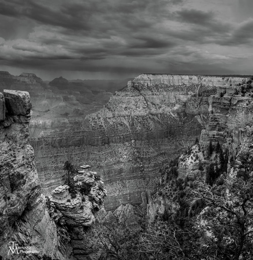 Grand Canyon Photograph - Mather Point B/w by Tim Maynard