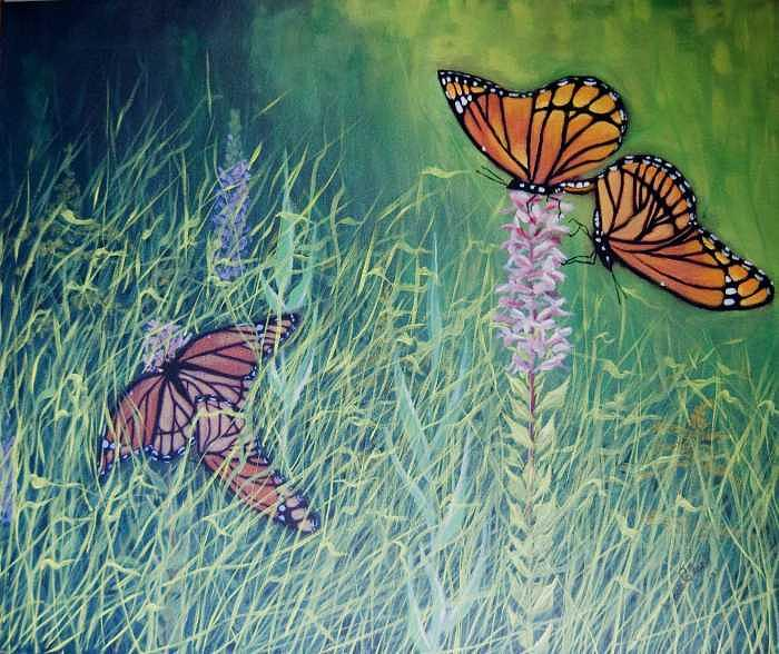 Nature Painting - Mating season-Monarchs by Wade Clark