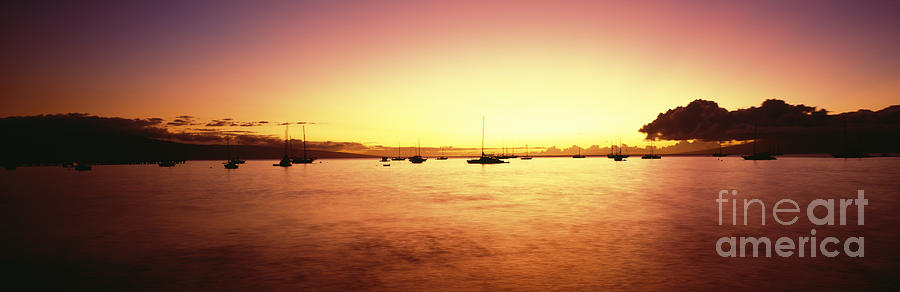 Amaze Photograph - Maui Boat Harbor Silhouette by Carl Shaneff - Printscapes