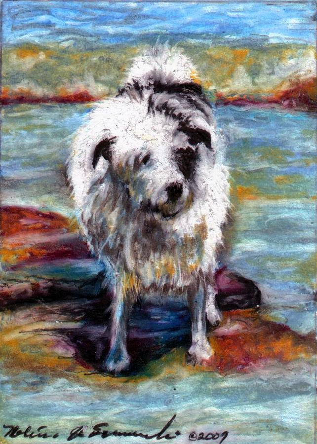 Dog Drawing - Maui On The Beach by Melissa J Szymanski