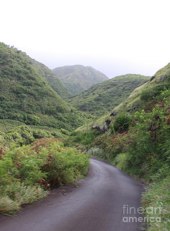Maui Road Through The Hills Photograph
