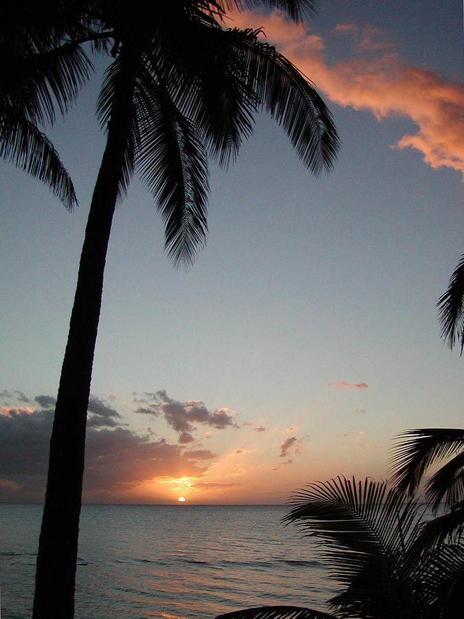 Maui Photograph - Maui Sunset by Dustin K Ryan