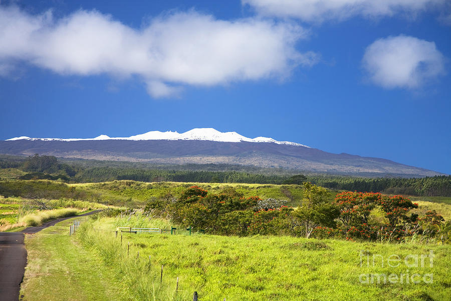Afternoon Photograph - Mauna Kea by Peter French - Printscapes