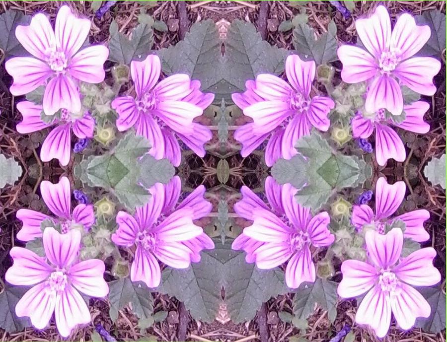 Mauve Photograph - Mauve Ground Flower Fractal 706c by Julia Woodman