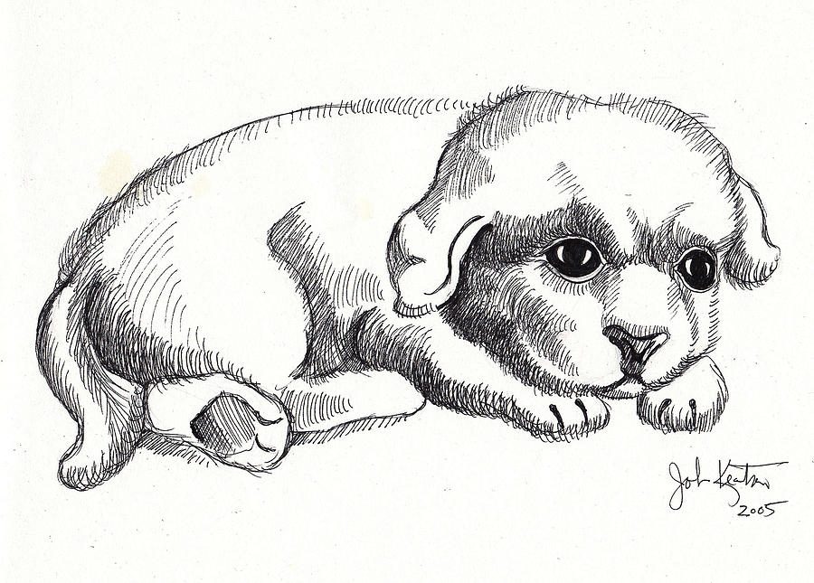 Drawings Drawing - Maya 1 by John Keaton