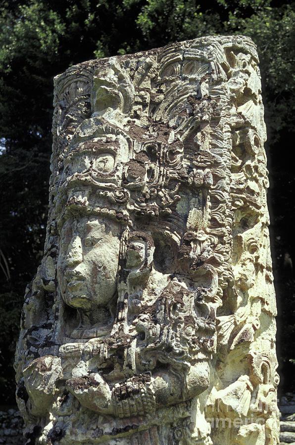 Honduras Photograph - Maya Stela Copan Honduras by John  Mitchell