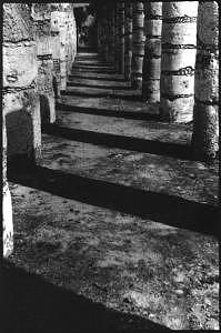 Black And White Photography Photograph - Mayan Temple by Mia Torres