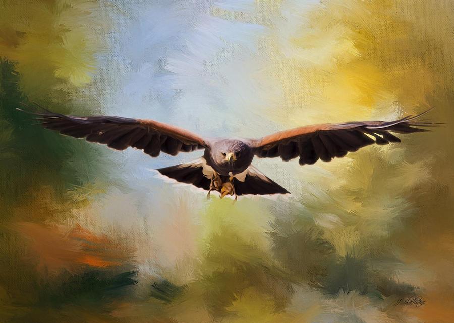 Maybe Hawk Art Painting By Jordan Blackstone