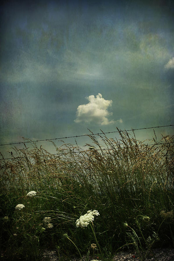 Clouds Photograph - Maybe Someday Ill Float Above by Laurie Search