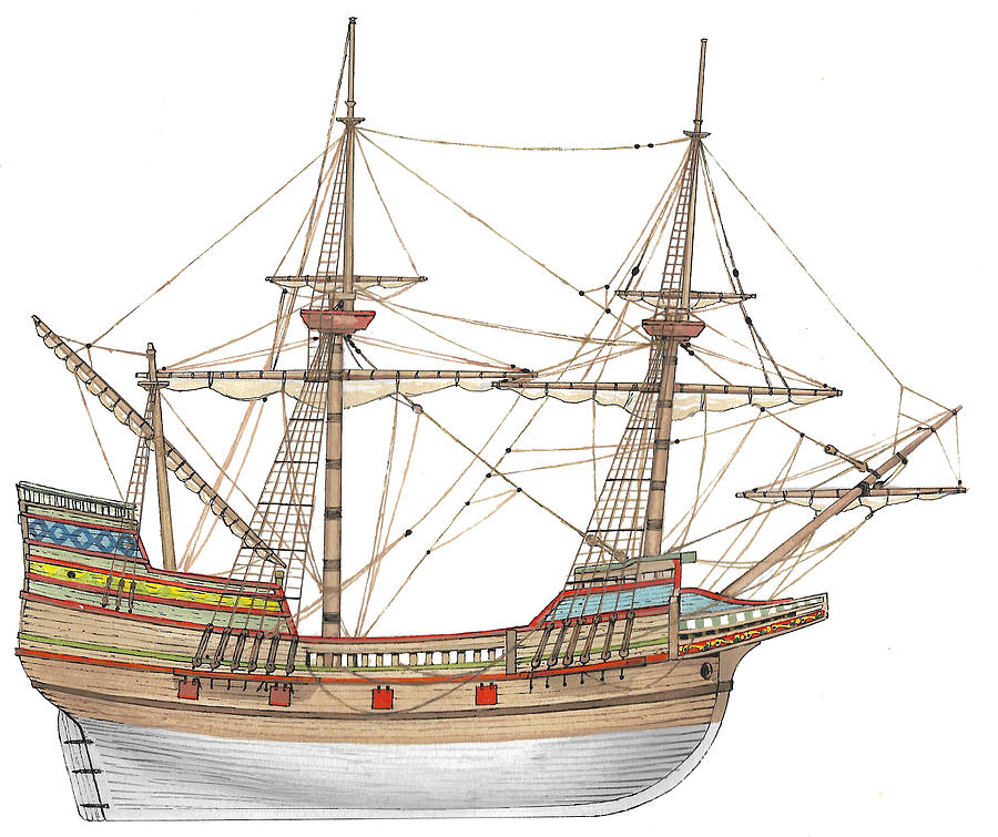Mayflower Drawing - Mayflower by The Collectioner