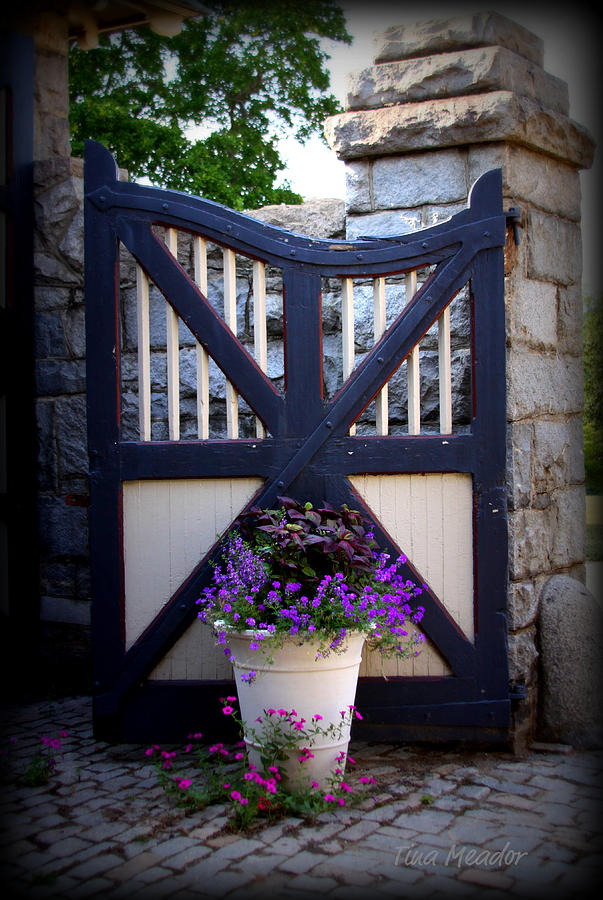 Maymont Photograph - Maymont Gate by Tina Meador