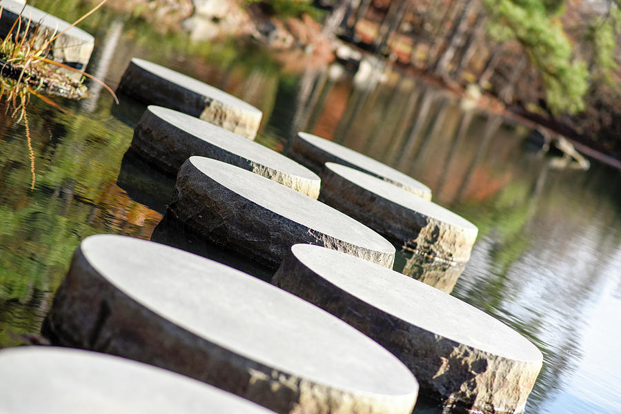 Maymont Stepping Stones by Doug Ash