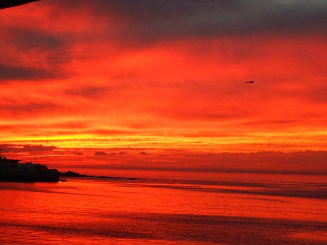 Sunset Photograph - Mazatlan Sunset by Allison Jones