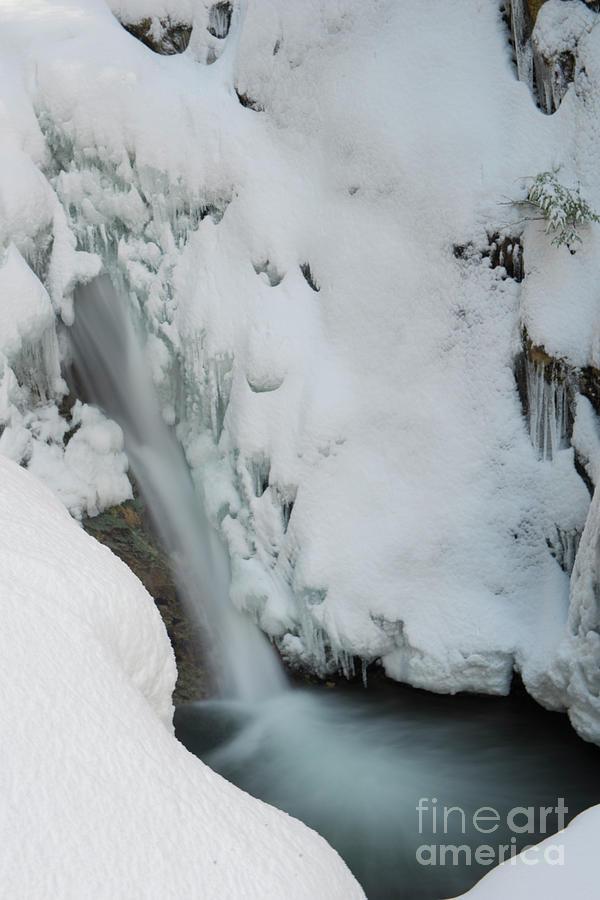McDonald Falls Frozen by Rod Wiens