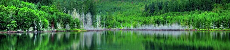 Mcguire Reservoir P Photograph
