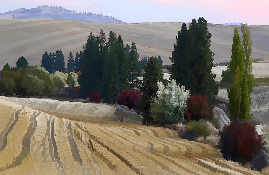 Palouse Photograph - Mckenzie Road In The Palouse by Jerry McCollum