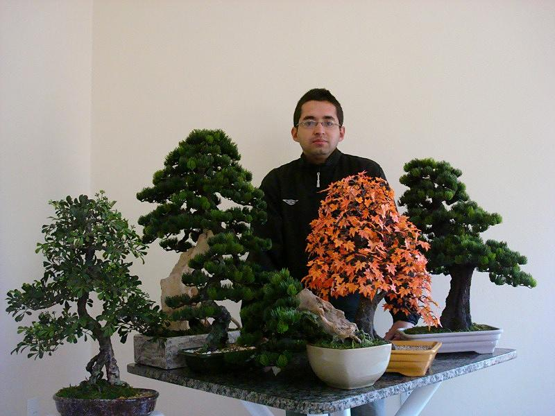 Bonsai Sculpture - Me And My Bonsais by Julio Cesar