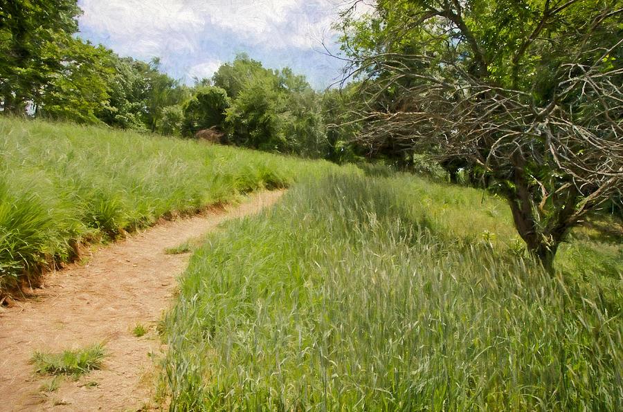 Landscape Digital Art - Meadow Path by Julie Wagaman