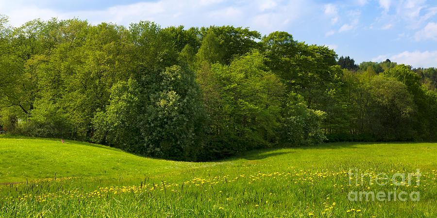 Sunny Meadows Photograph - Meadows Panorama by Lutz Baar