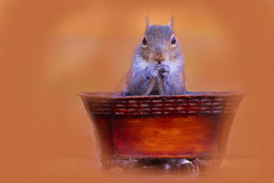 Jai Johnson Photograph - Mealtime Prayers Squirrel Art by Jai Johnson