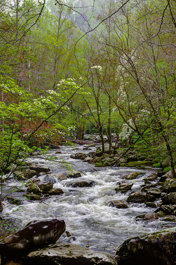 Blount County Photograph - Meandering by Kristina Plaas