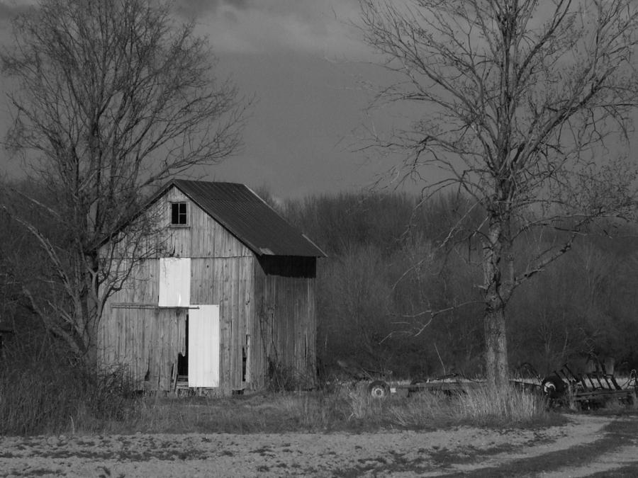 Shed Photograph - Medina Shed by Michael L Kimble