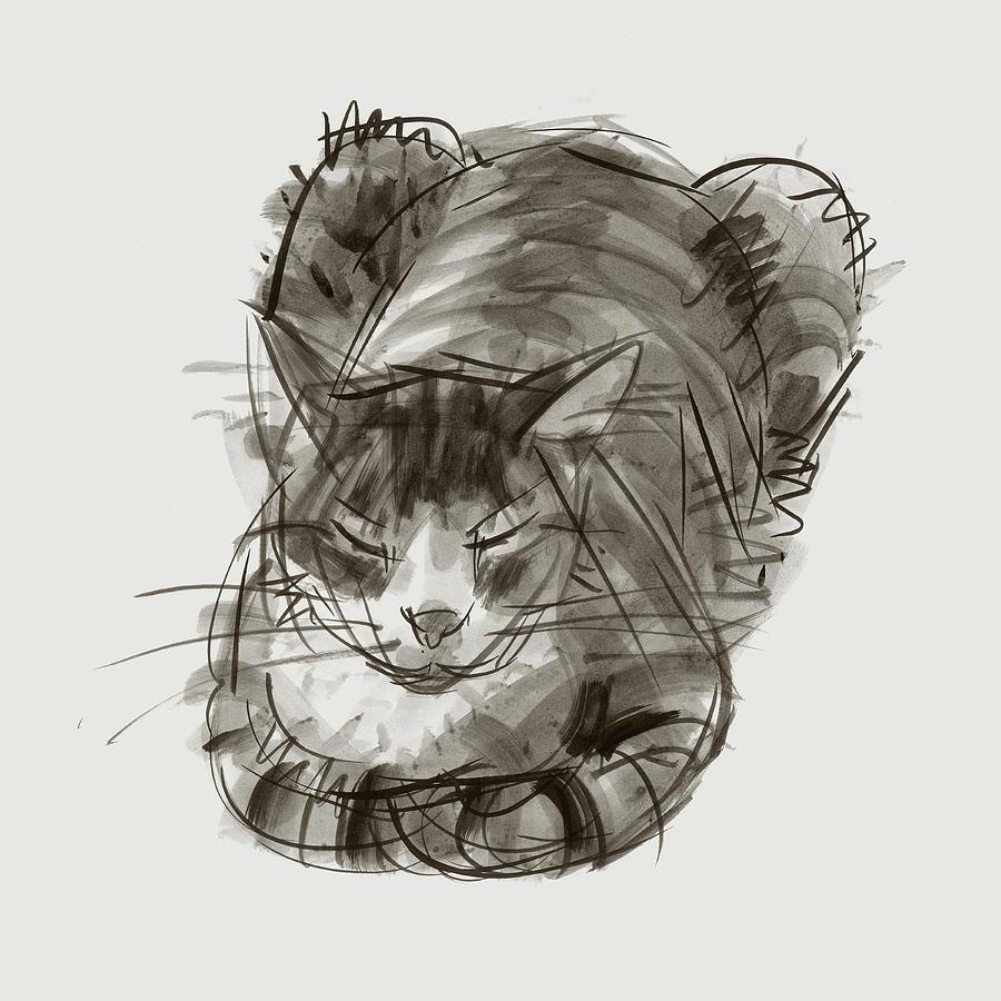 Meditating Cat by Judith Kunzle