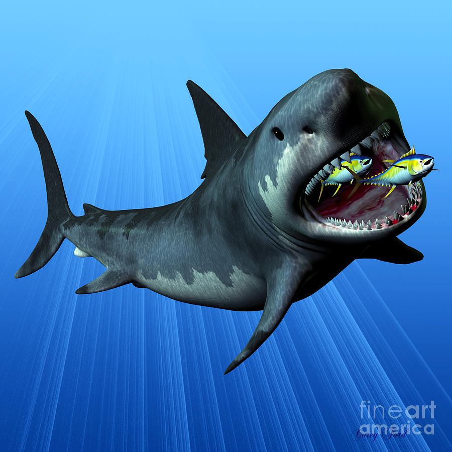 Megalodon Painting - Megalodon by Corey Ford