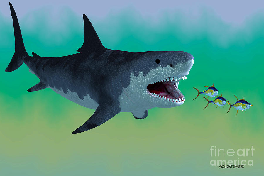 f7e1ca31ab Megalodon Painting - Megalodon Shark Attack by Corey Ford