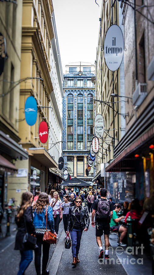 Melbourne Photograph - Melbourne City by Perry Webster
