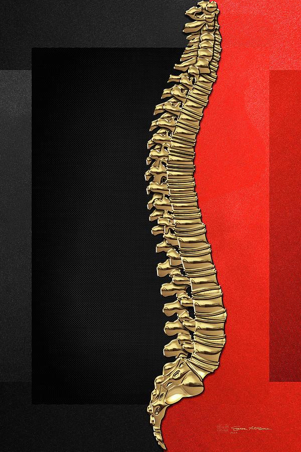 Backbone Digital Art - Memento Mori - Gold Human Backbone Over Black And Red Canvas by Serge Averbukh