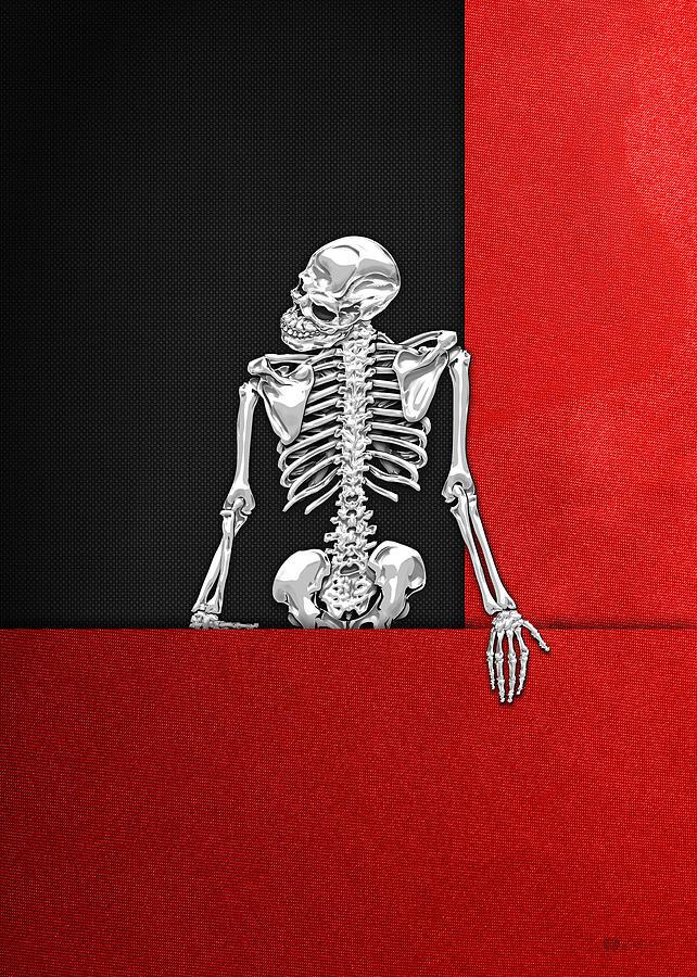 Bones Photograph - Memento Mori - Skeleton on Red and Black  by Serge Averbukh