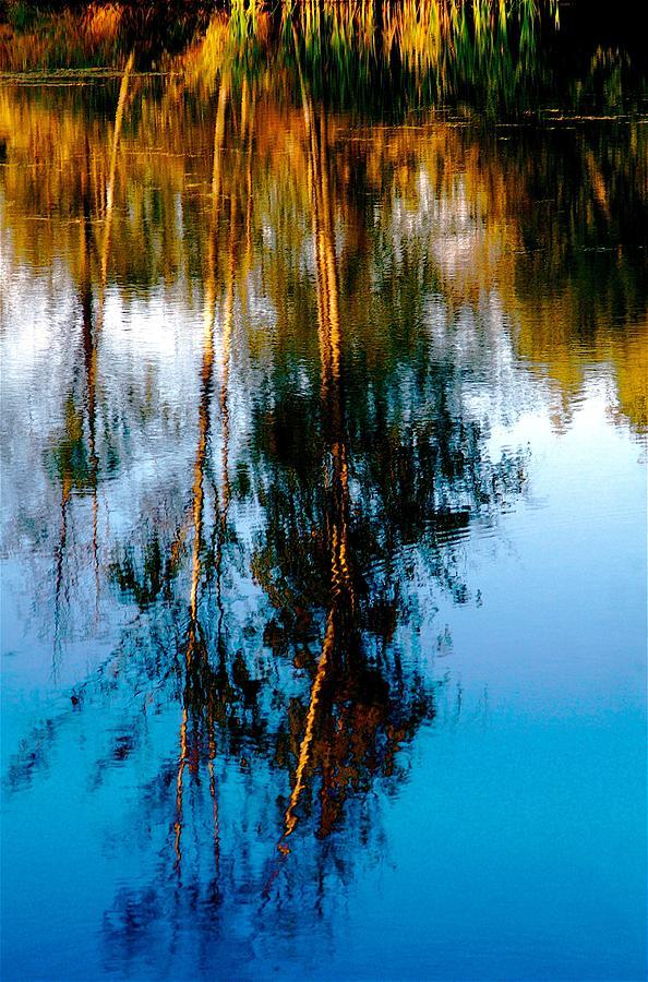 Monet Photograph - Memories Of Monet by Jeffrey  Sinnock